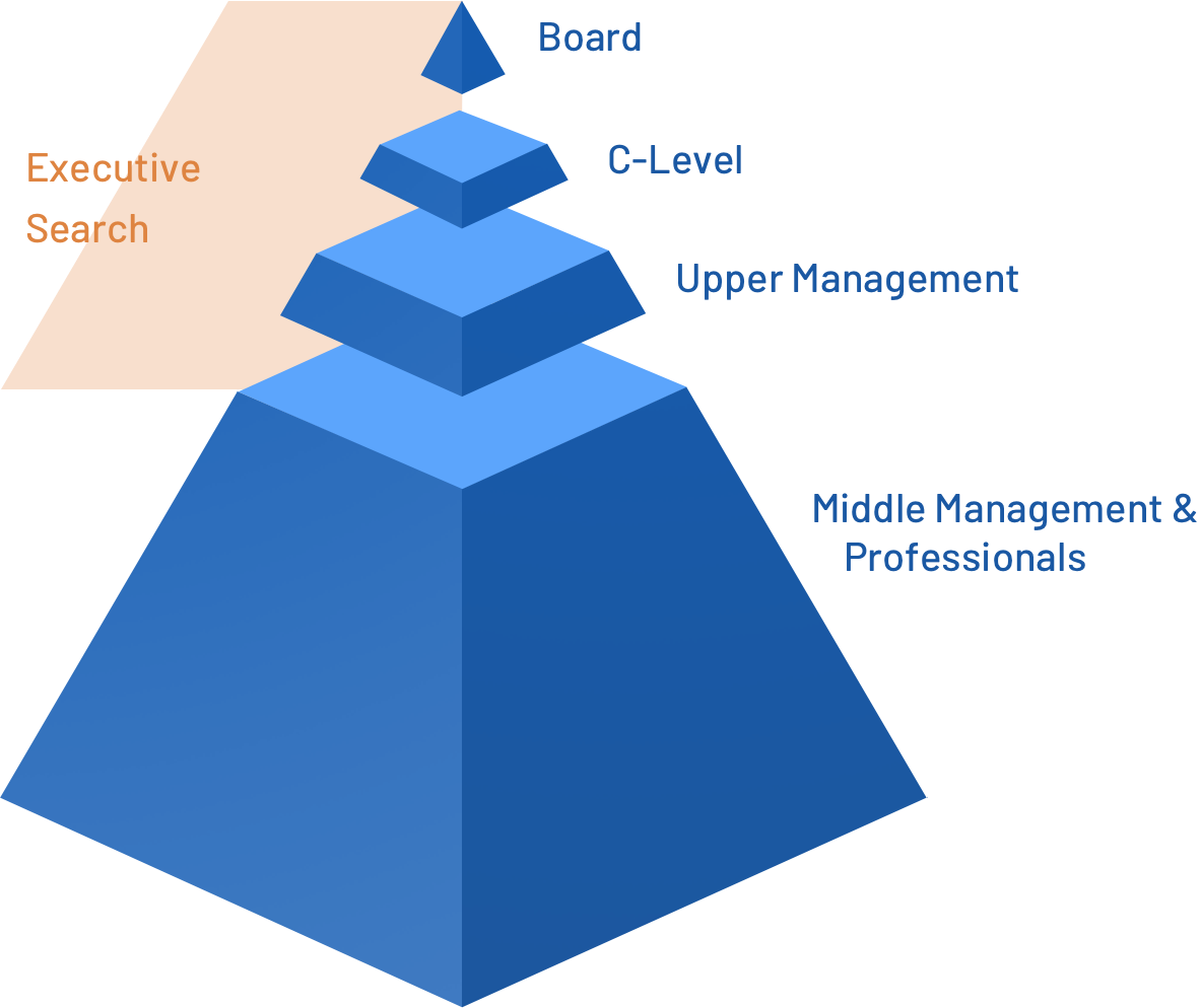company_structure_executive_search-3